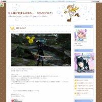 から揚げ定食★お待ちー (PSO2ブログ)